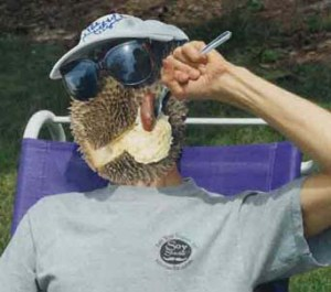 Durian_head_eating2