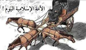 Salafy bingung